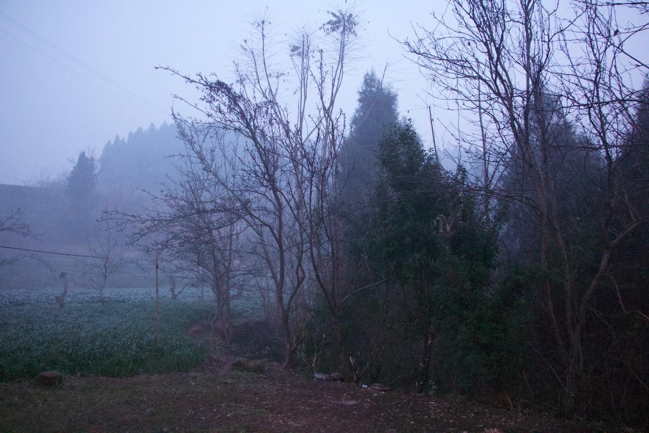 雾,不是雾霾