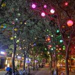 交大闵行校区对面那条挂满彩灯的小街道